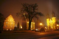 Domkyrka av helgon Peter och Paul i Poznan i dimman Arkivbilder