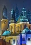 Domkyrka av helgon Peter och Paul i Poznan i dimman Royaltyfria Bilder