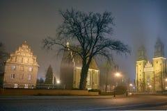 Domkyrka av helgon Peter och Paul i Poznan i dimman Royaltyfria Foton