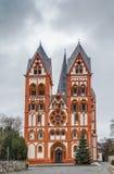 Domkyrka av Limburg, Tyskland Fotografering för Bildbyråer