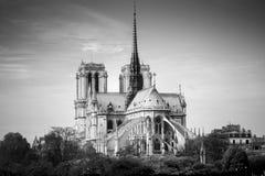 Domkyrka av Notre Dame de Paris den soliga hösteftermiddagen för bw-framsida för bakgrund svart le för foto paris france arkivfoto