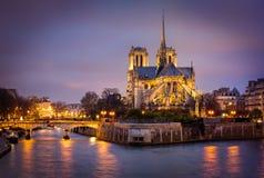 Domkyrka av Notre Dame, Ile de La Citera, Paris, Frankrike Royaltyfria Bilder