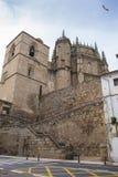 Domkyrka av Plasencia, Caceres, Spanien Arkivfoto
