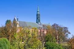 Domkyrka av Sandomierz, Polen Arkivbild