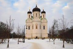 Domkyrka av St. Catherine i Tsarskoye Selo (Pushkin) Arkivfoton