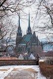 Domkyrka av St Peter och Paul Royaltyfri Fotografi