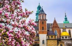 Domkyrka av St Stanislaw och St Vaclav och kunglig slott på arkivfoto