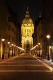 Domkyrka av St Stephen i den Budapest Ungern Royaltyfri Foto