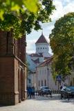 Domkyrka av Theotokosen i Vilnius, Litauen Arkivfoto