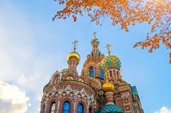 Domkyrka av vår frälsare på Spilled blod i St Petersburg, Ryssland i höstdag Arkivbilder