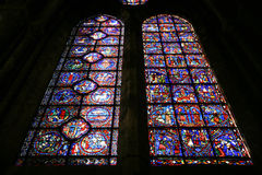 domkyrka chartres Royaltyfri Foto