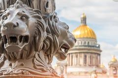Domkyrka för helgonIsaac ` s ut ur fokus, i förgrunden skulpturen av lejon på en pelare st för domkyrkacupolaisaac petersburg rus arkivbild
