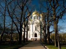 Domkyrka för ` s för St Catherine i den Tsarskoye seloen Arkivbilder