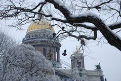 Domkyrka för ` s för St Isaac i St Petersburg royaltyfria foton