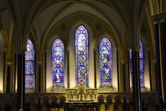 Domkyrka för St Patrick ` s Arkivbild