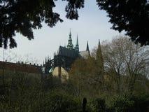 Domkyrka för St Vitus från kunglig personträdgården, Prague, Tjeckien Royaltyfri Fotografi