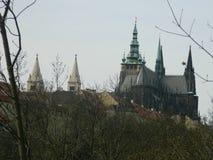 Domkyrka för St Vitus från kunglig personträdgården, Prague, Tjeckien Royaltyfri Foto