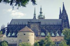 Domkyrka för St Vitus på den Prague slotten royaltyfri fotografi