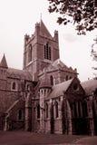 domkyrka gotiska dublin Royaltyfri Foto