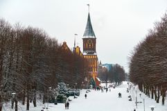 Domkyrka i Kaliningrad, vinterstadslandskap arkivbild