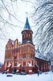 Domkyrka i Kaliningrad, vinterstadslandskap fotografering för bildbyråer