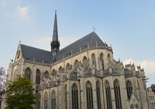Domkyrka i Leuven Belgien Royaltyfri Fotografi