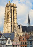 Domkyrka i Mechelen Belgien Royaltyfria Bilder
