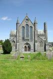 domkyrka ireland kilkenny Royaltyfri Fotografi