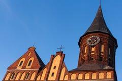 Domkyrka Kaliningrad Royaltyfri Fotografi
