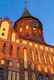 Domkyrka Kaliningrad Royaltyfria Bilder