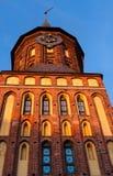 Domkyrka Kaliningrad Arkivfoton