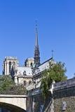 Domkyrka Notre Dame de Paris från floden Seine Royaltyfria Foton