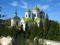 domkyrka ortodoxa kiev Royaltyfria Foton