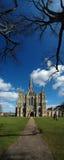 domkyrka salisbury arkivfoton