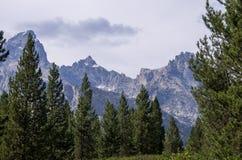 Domkyrkagrupp i storslagen Teton nationalparklöneförhöjning ovanför en skog Royaltyfri Fotografi