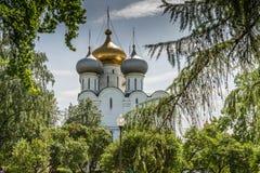 Domkyrkakyrkan av den Smolensk symbolen av modern av guden Fotografering för Bildbyråer