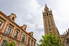Domkyrkan av Seville med de Giralda sikterna från piazza Virg arkivfoton