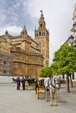 Domkyrkan av Seville med de Giralda sikterna från piazza Virg arkivbilder