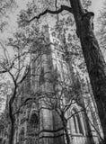 Domkyrkan av St John prästen, officiellt domkyrkakyrkan av Saint John, New York fotografering för bildbyråer