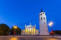 Domkyrkan kvadrerar i Vilnius, Litauen Royaltyfri Foto