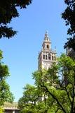 Seville royaltyfria bilder