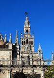 Domkyrkan och Giralda står hög, Seville, Spanien. Royaltyfria Foton