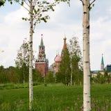 Domkyrkan och Spasskaya för St-basilika` s Pokrovsky står högt Royaltyfria Foton