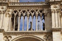 DomkyrkaNotre-Dame de Paris - fransk architecure - Paris, Frankrike Royaltyfria Foton