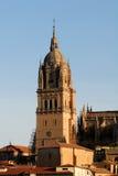 domkyrkasalamanca torn Royaltyfri Fotografi
