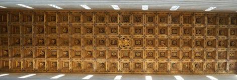 Domkyrkatak i Pisa Royaltyfri Bild