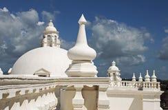 Domkyrkatak med kupoler Fotografering för Bildbyråer