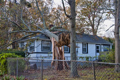 Dommages d'ouragan Photos libres de droits