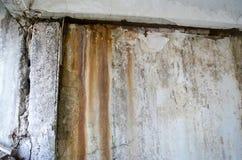 Dommages de moule sur la fin de mur  image libre de droits