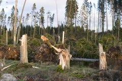Dommages de tempête photos stock